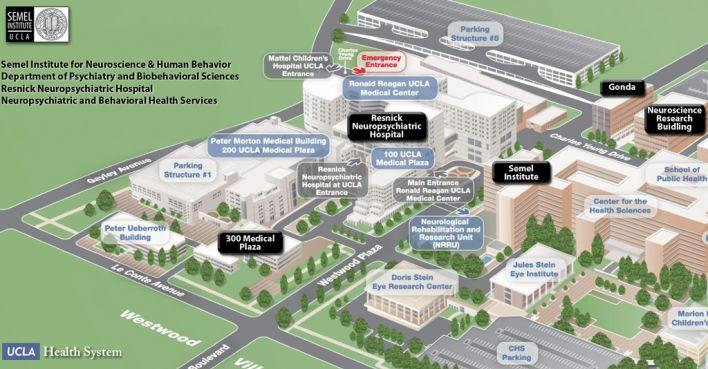 UCLA (Westwood) Medical Enterprise | Semel Institute for